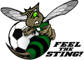 Mansfield Youth Soccer - Feel The Sting